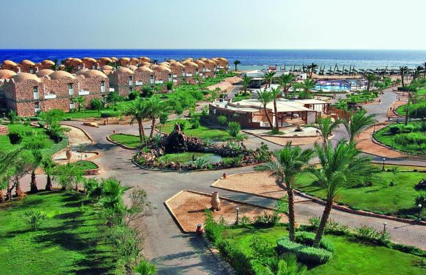 фото Beach Albatros Resort Marsa Alam (ex. Alba Club Helioland Beach Resort Quseir) изображение №6