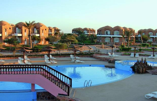 фотографии Beach Albatros Resort Marsa Alam (ex. Alba Club Helioland Beach Resort Quseir) изображение №4