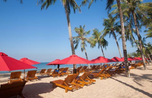 фото Richis Beach Resort изображение №54