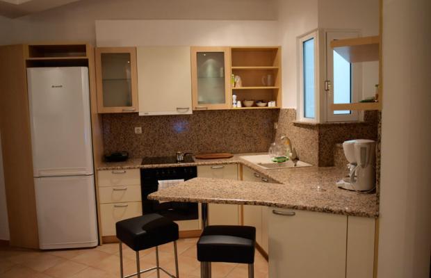 фотографии Athens Habitat изображение №12