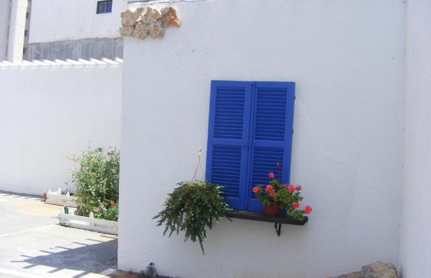 фотографии Eleonora изображение №4