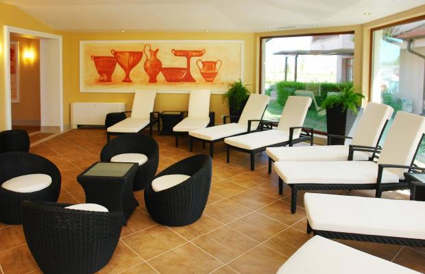 фотографии The Vineyards Resort изображение №92