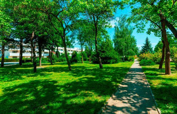 фотографии отеля Ласточка (Lastochka) изображение №7