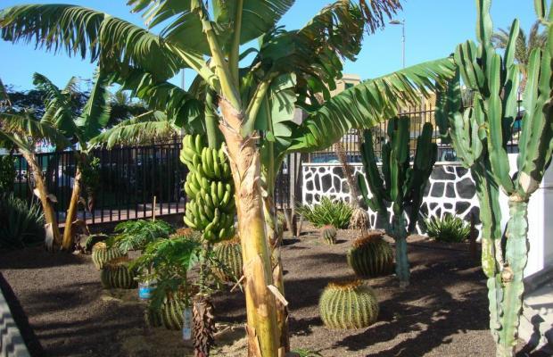 фото отеля Los Cactus изображение №29