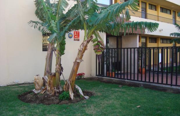 фотографии Los Cactus изображение №28