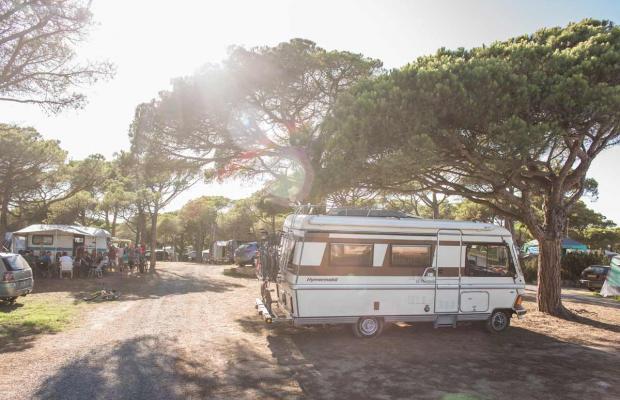 фотографии Camping El Delfin Verde изображение №16