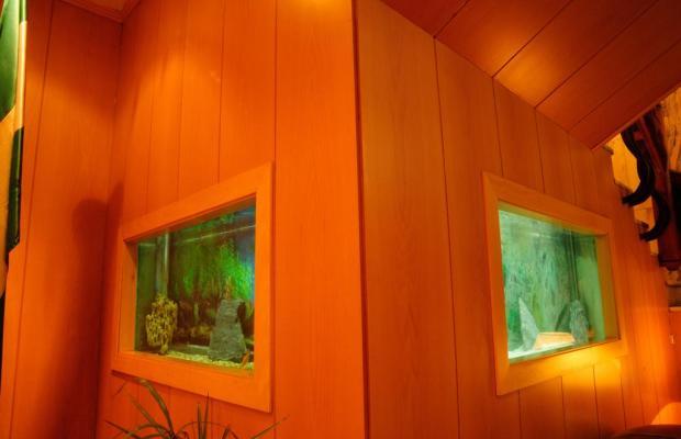фотографии отеля Macia Gran Lar (ex. Gran Hotel Lar) изображение №7