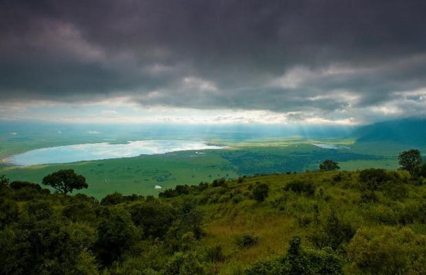 фотографии Ngorongoro Serena Safari Lodge изображение №16