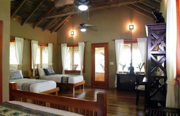 фото отеля Copa De Arbol Beach & Rainforest Resort изображение №29