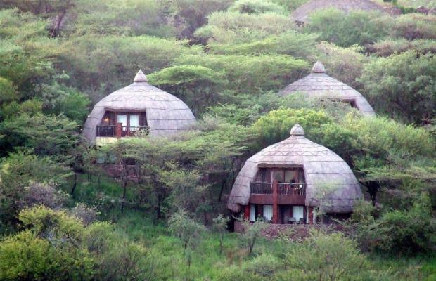 фото Serengeti Serena Safari Lodge изображение №10