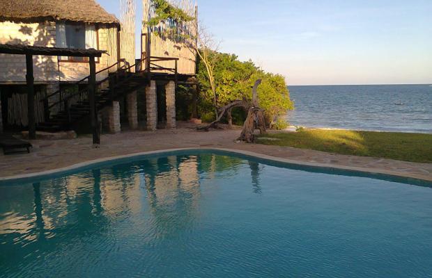 фотографии отеля The Cove Treehouses (ex. The Cove Retreat) изображение №19