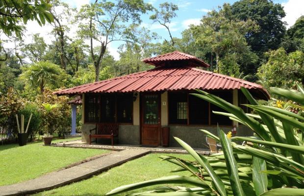 фото Casa Corcovado Jungle Lodge изображение №74