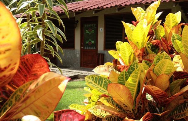 фото Casa Corcovado Jungle Lodge изображение №70
