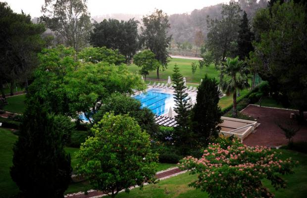 фото Carmel Forest Spa Resort by Isrotel Exclusive Collection изображение №34