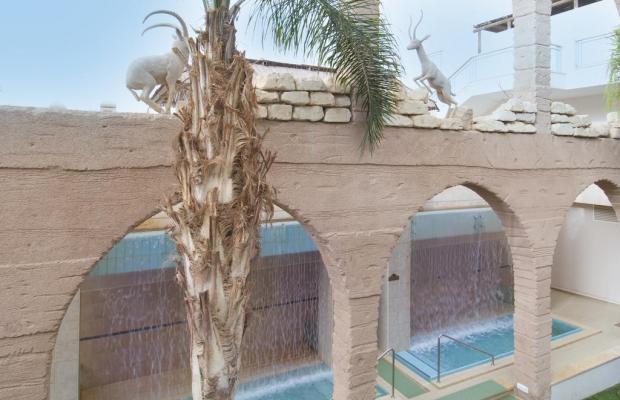 фотографии Herods Vitalis Spa Hotel Eilat a Premium collection by Leonardo Hotels изображение №8