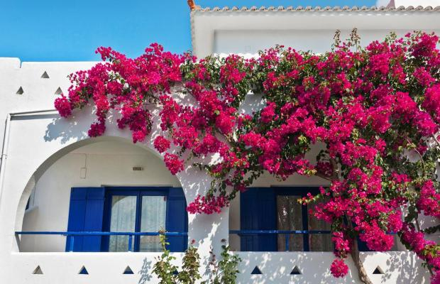 фотографии Sunrise Village Hotel изображение №16