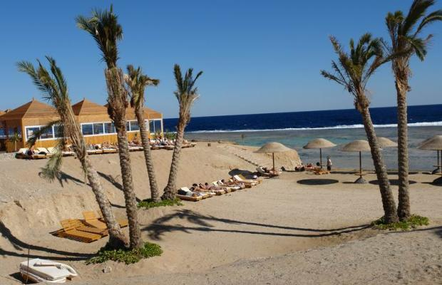 фотографии Swiss Inn Plaza Resort Marsa Alam (ex. Badawia Resort) изображение №12