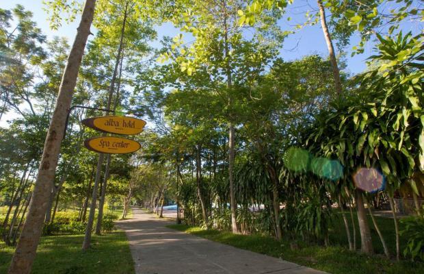 фотографии отеля Alba Hot Springs Resort изображение №55