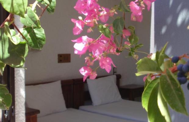 фото отеля Fevro изображение №13