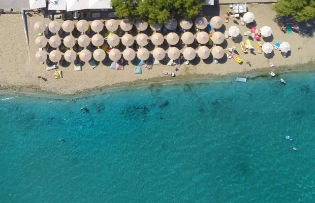 фотографии отеля Golden Star City Resort изображение №3