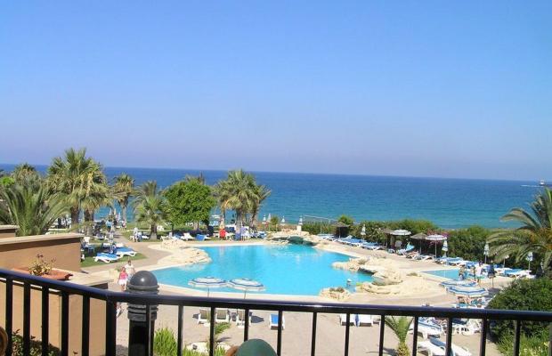 фотографии отеля Venus Beach Hotel изображение №35