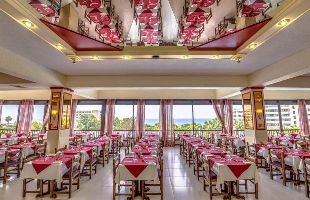 фотографии отеля Cyprotel Florida (ex. Florida Beach Hotel) изображение №7