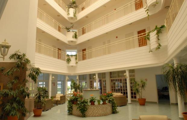 фотографии отеля Maistrali Beach Hotel Apts изображение №15