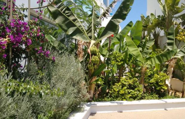 фотографии Vrissaki Beach Hotel изображение №20