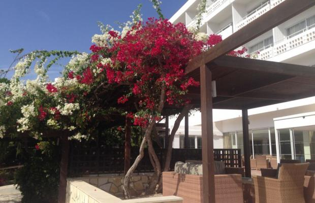 фотографии Nissi Beach Resort  изображение №16