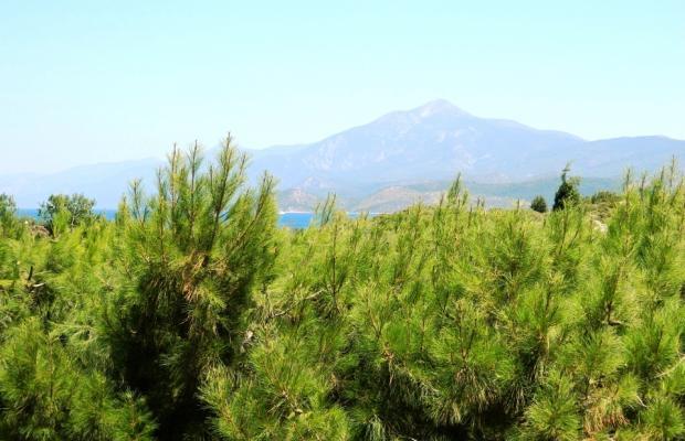 фотографии отеля Glicorisa Beach изображение №47
