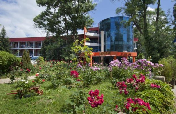 фотографии отеля Regina (Регина) изображение №19