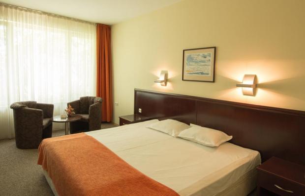 фотографии отеля Hotel Divesta изображение №27