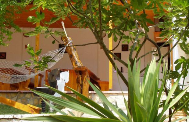 фото Villa Exotica (Вилла Экзотика) изображение №2