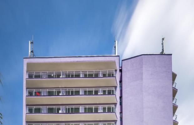 фотографии Svezhest (Свежесть) изображение №16