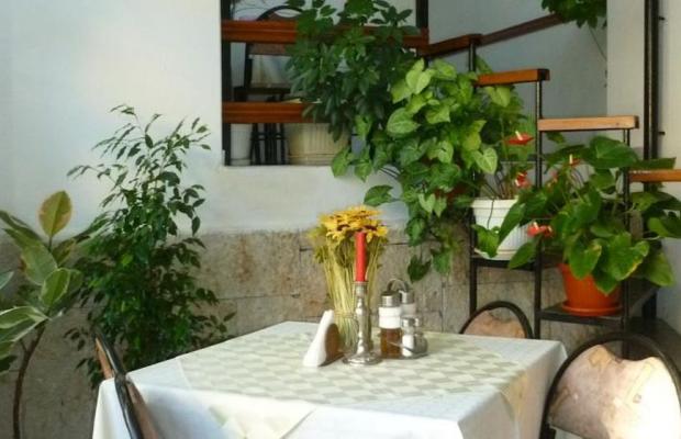 фотографии отеля Tonus Guest House изображение №23