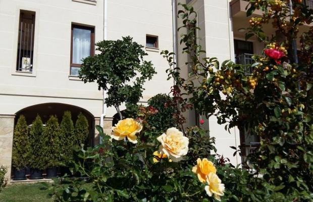 фотографии отеля Sorrento Sole Mare (Сорренто Соле Маре) изображение №3