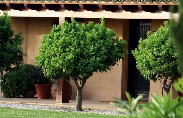 фотографии отеля Mas de Torrent Hotel & Spa изображение №27