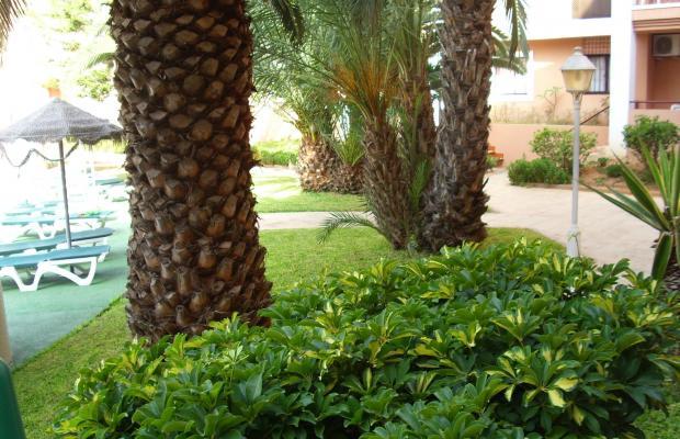 фотографии Apartamentos Estrella De Mar изображение №12