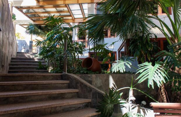 фотографии отеля IFA Beach изображение №39