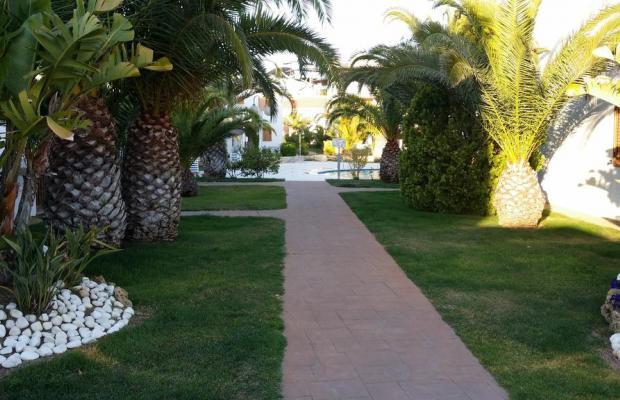 фото отеля Estival Park Apt - Punta Prima изображение №17