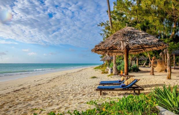 фотографии Anna of Zanzibar изображение №16