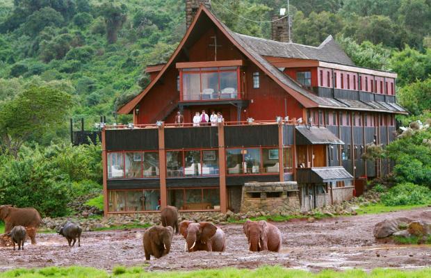 фото отеля The Ark изображение №1