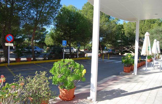 фотографии отеля Palmera Beach изображение №23