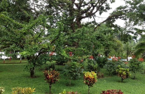 фотографии отеля ilan-ilan Trails & Lodge изображение №15