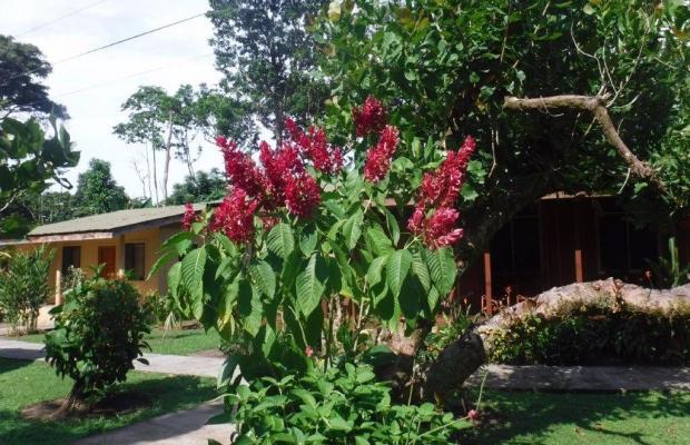 фотографии Laguna Lodge изображение №12