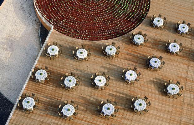 фото отеля The Ritz-Carlton изображение №21