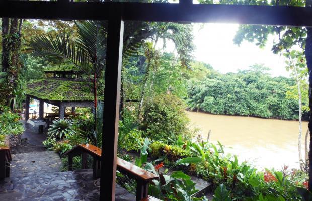 фотографии отеля Aguila de Osa Inn изображение №15