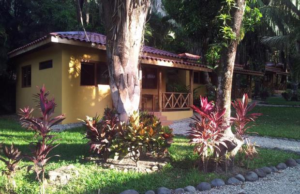 фотографии Esencia Hotel and Villas изображение №32