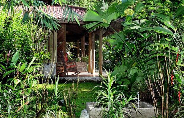 фото отеля Esquinas Rainforest Lodge изображение №41