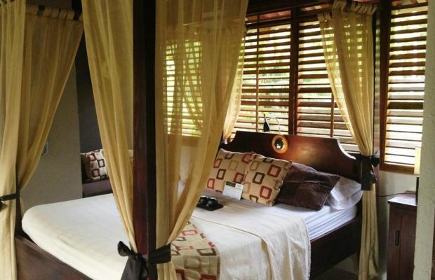 фотографии отеля Casa Corcovado Jungle Lodge изображение №83